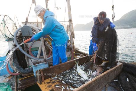 定置網漁の男性の素材 [FYI01030590]