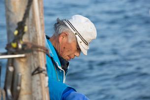 定置網漁の男性の素材 [FYI01030614]