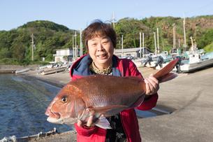 漁港で魚を持つ女将の素材 [FYI01030635]