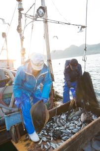 定置網漁の男性の素材 [FYI01030654]