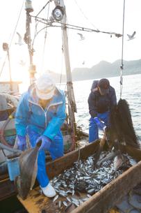 定置網漁の男性の素材 [FYI01030673]