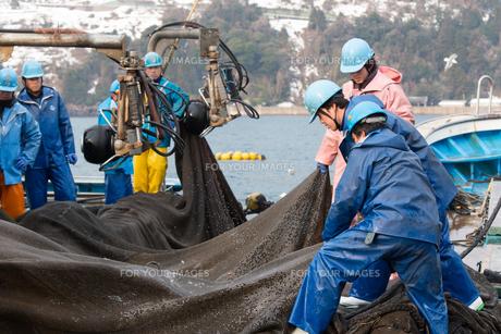 漁師の素材 [FYI01030695]