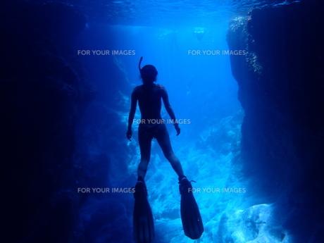 シュノーケルで潜る女性の素材 [FYI01030698]