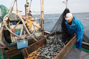 定置網漁の男性の素材 [FYI01030707]