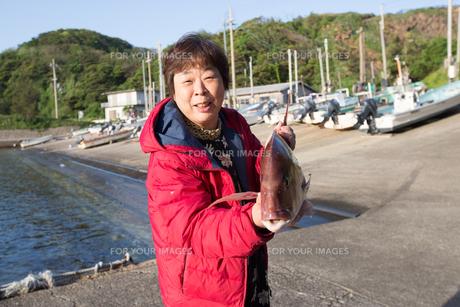 漁港で魚を持つ女将の素材 [FYI01030709]