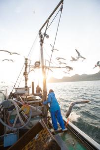 定置網漁の男性の素材 [FYI01030717]