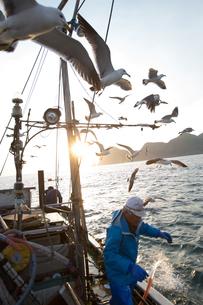 定置網漁の男性の素材 [FYI01030721]