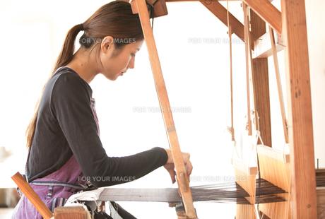 大島紬を織る女性の素材 [FYI01030753]
