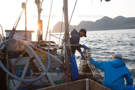 定置網漁の男性の素材 [FYI01030784]