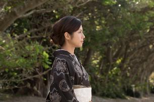 大島紬の着物でポーズする女性の素材 [FYI01030803]