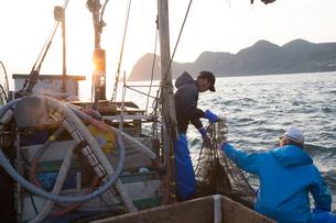 定置網漁の男性の素材 [FYI01030827]
