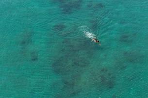 海を泳ぐ男の素材 [FYI01030833]