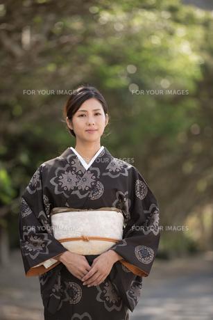 大島紬の着物でポーズする女性の素材 [FYI01030838]