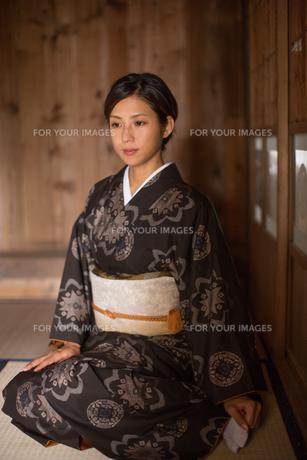 大島紬の着物でポーズする女性の素材 [FYI01030859]