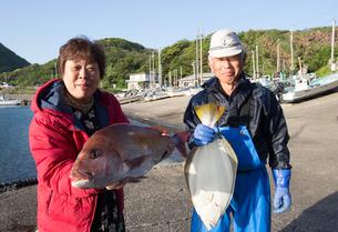 漁港で魚を持つ女将と船長の素材 [FYI01030878]