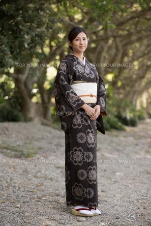 大島紬の着物でポーズする女性の素材 [FYI01030965]