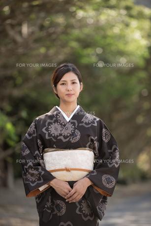 大島紬の着物でポーズする女性の素材 [FYI01030994]