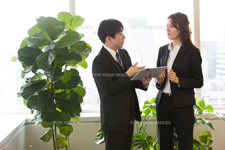 会議するビジネスマンの素材 [FYI01031126]