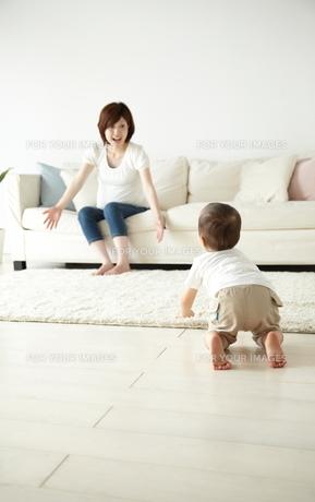 親子の素材 [FYI01031902]