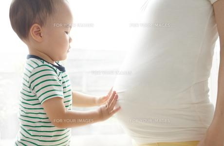 親子の素材 [FYI01031918]