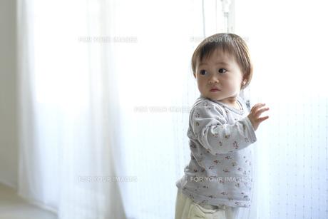 カーテンで遊ぶ赤ちゃんの素材 [FYI01032097]