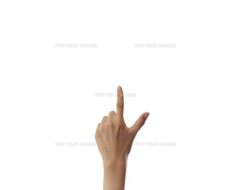 白い背景にある女性の手の素材 [FYI01033053]