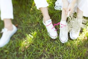 芝生の上に座っている新郎新婦の素材 [FYI01033222]