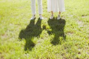 芝生の上に立っている新郎新婦の素材 [FYI01033375]