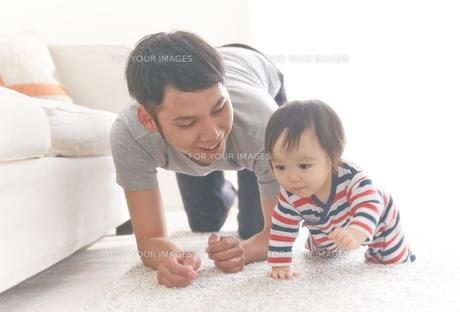 ハイハイする赤ちゃんの素材 [FYI01033569]