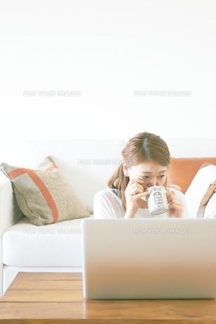 コーヒーを飲みながらパソコンをする女性の素材 [FYI01034237]