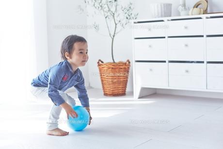 お部屋の中でボール遊びをする男の子の素材 [FYI01034349]