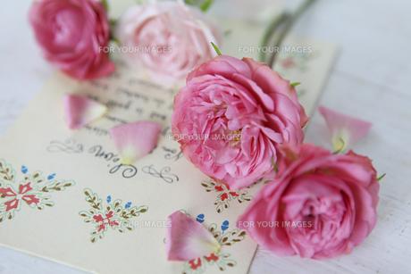 小さなバラの素材 [FYI01037382]