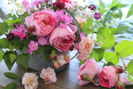 庭の花を飾るの素材 [FYI01037602]