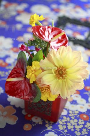 古絹和柄布の上の赤茶器でのアレンジの素材 [FYI01038416]