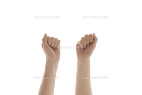 女性の手の素材 [FYI01038765]