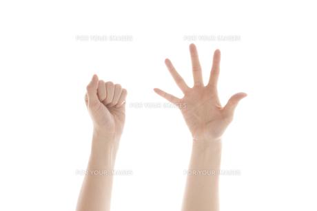 女性の手の素材 [FYI01038780]