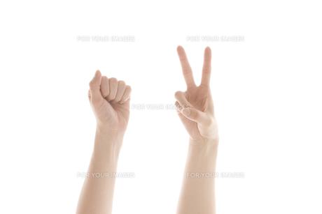 女性の手の素材 [FYI01038840]