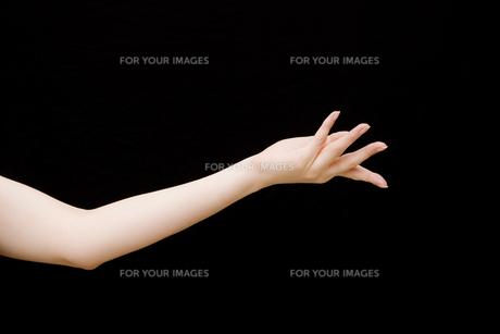 女性の手の素材 [FYI01038932]