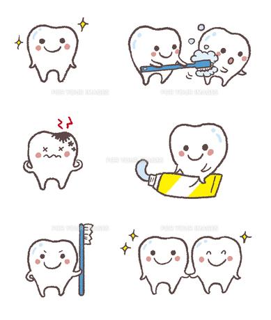 元気な歯、虫歯、歯磨きを促す歯の素材 [FYI01041240]