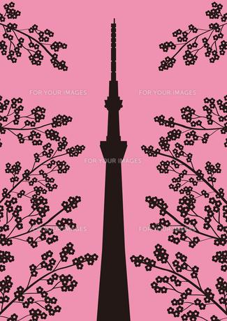 桜とスカイツリーの素材 [FYI01042343]