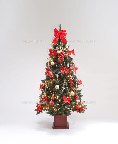 クリスマスツリーの素材 [FYI01042431]