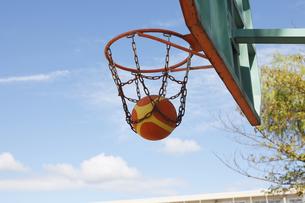 バスケットゴールの素材 [FYI01042538]