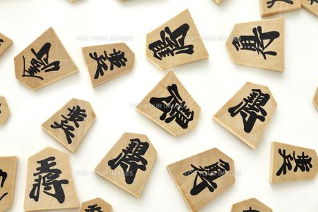 将棋のコマの素材 [FYI01044043]