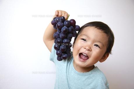 ぶどうを笑顔で持つ子供の素材 [FYI01044069]