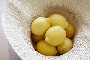麦わら帽子に入ったレモンの素材 [FYI01044072]
