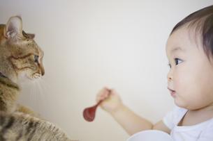 スプーンと器を持った幼児と猫の素材 [FYI01044115]