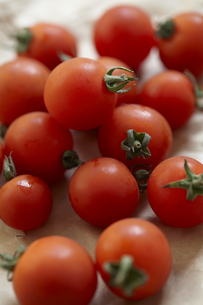 茶色の包装紙の上に置いた有機野菜のミニトマトの素材 [FYI01044122]