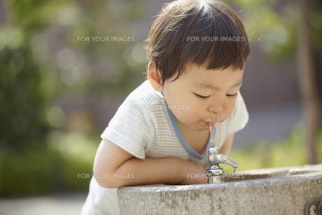 公園の飲み水を飲む子供の素材 [FYI01044135]