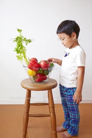 セロリやトマト、ピーマンなどの前に立って野菜を選ぶ子供の素材 [FYI01044158]