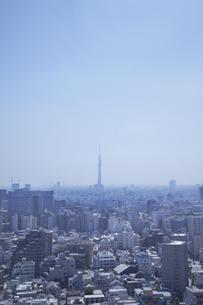 東京スカイツリーの遠望の素材 [FYI01044204]